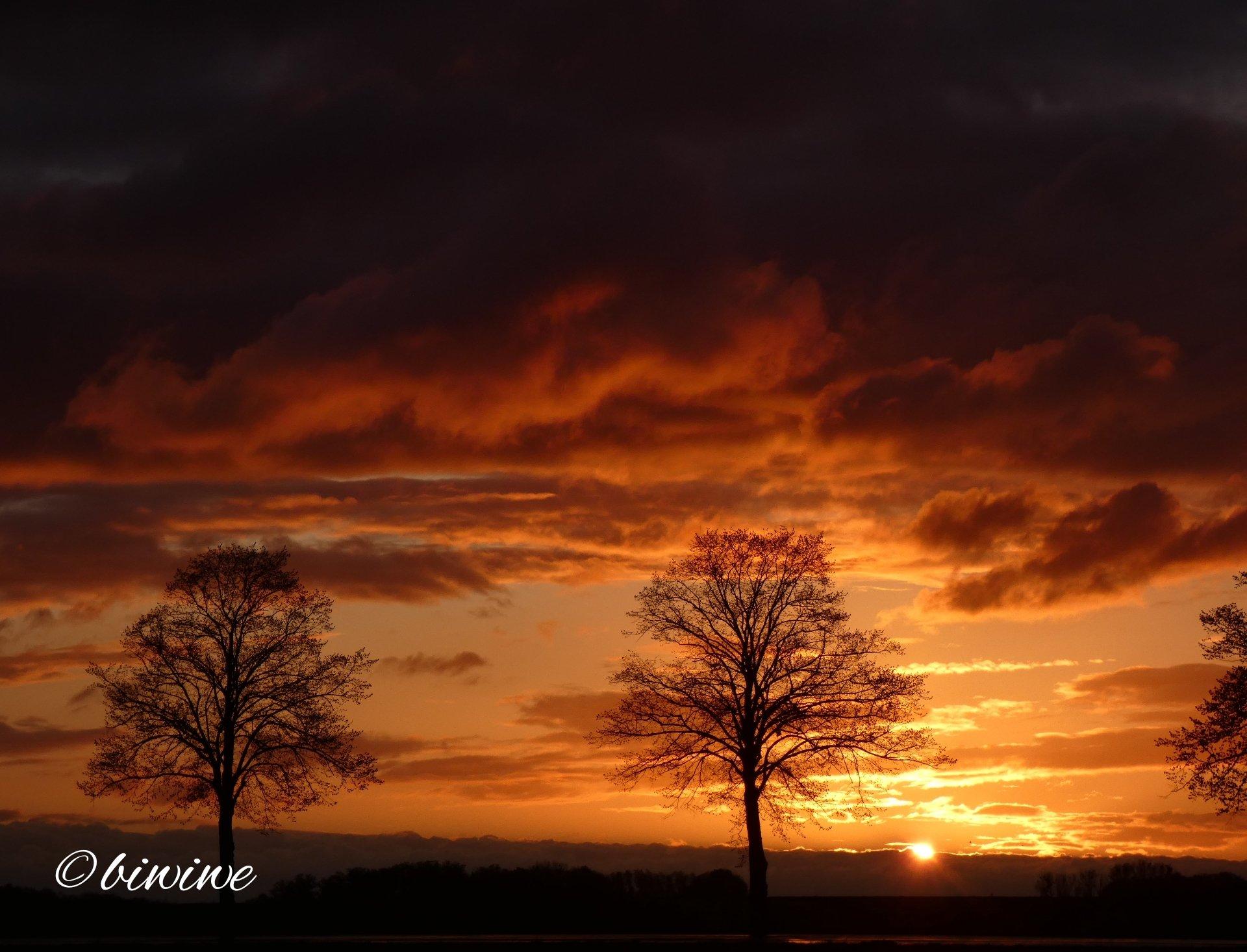 Sonnenaufgang 5.5.
